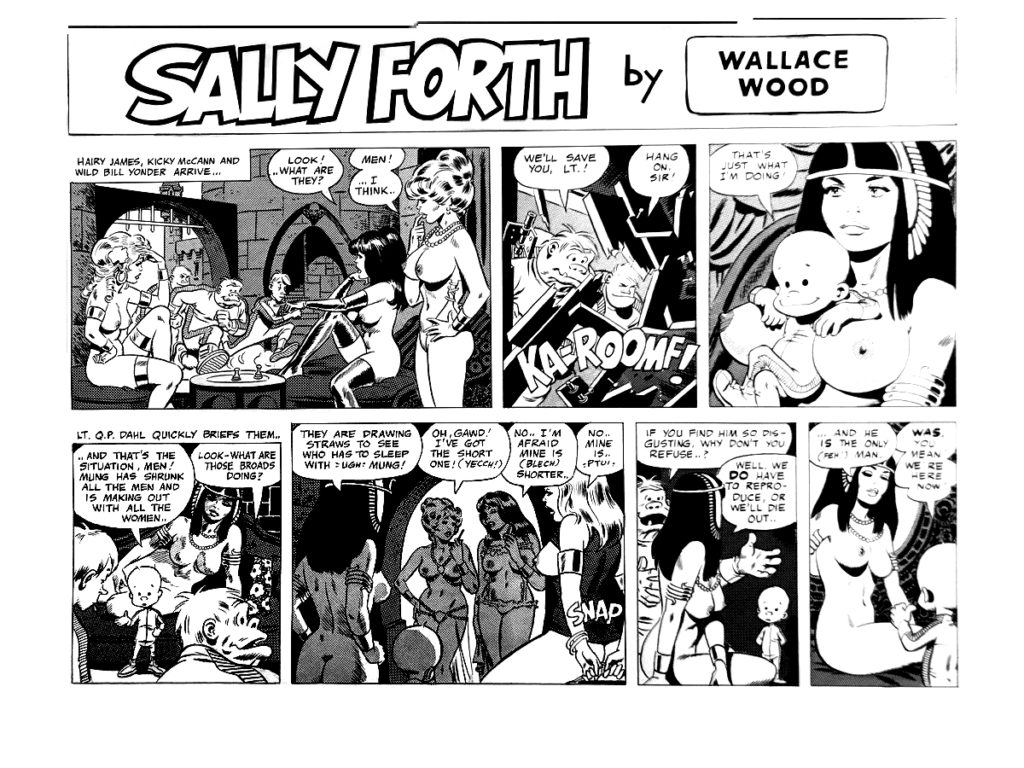 Sally Forth comic strip S16 The Overseas Weekly 1975.1A